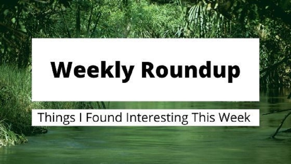 Weekly Roundup 31st May 2020